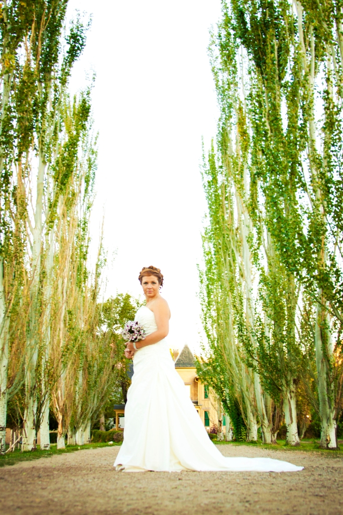 salt lake valley bridal photographer, utah wedding photographer, sl wedding photographers, engagements, fun bridals utah, cool engagement locations utah, bridals in utah valley, winter bridal photography, little cottonwood canyon, photographers utah, ut engagements, engagement photography locations, effervescent media works, rebecca mabey, vintage style bridals, salt lake city engagements, park city engagements, bountiful engagements, west jordan photographers, sandy photographers, draper wedding photographers, murray wedding photography, engagements salt lake county, draper bridal photography, bridal photography utah, utah bridal photographers,  bridal photography utah