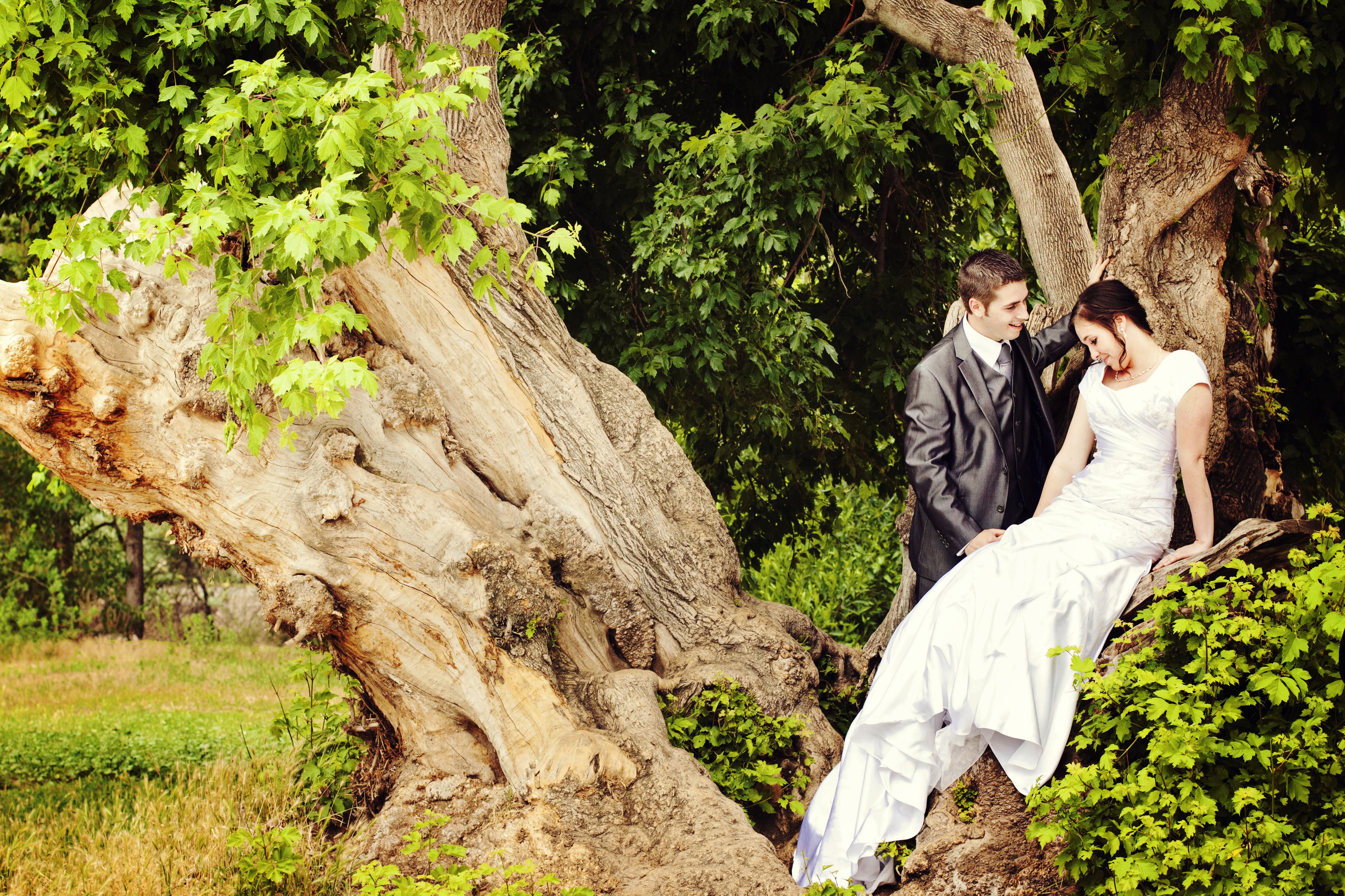 Northern utah wedding photographers effervescent media works for Affordable utah wedding photographers